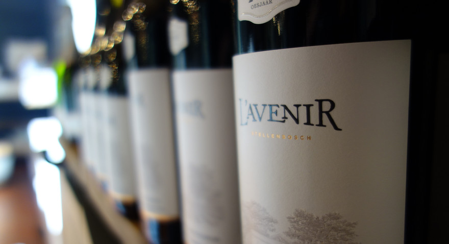 wine_sa-experiencejpg