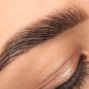 Eyebrows Powder Technique