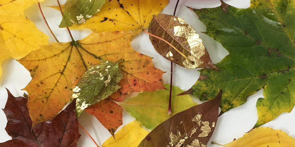 ART IN NATURE SERIES: Kids Workshop (Ages 8-12) with Lara & Andrea