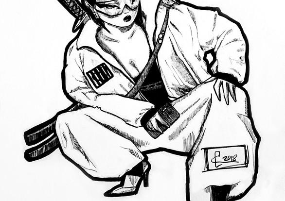 Ninja Samurai 3.0
