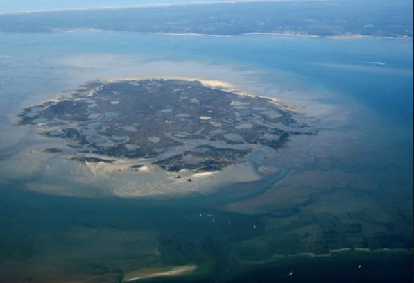 Le Cap ferret, Arcachon, l'île aux oiseaux, le banc d'arguin et la dune du Pilat. Louez votre bateau au Cap Ferret