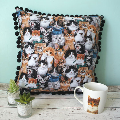 Cat Cushion TSB
