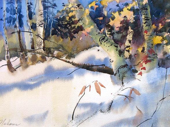 Wintering Brich