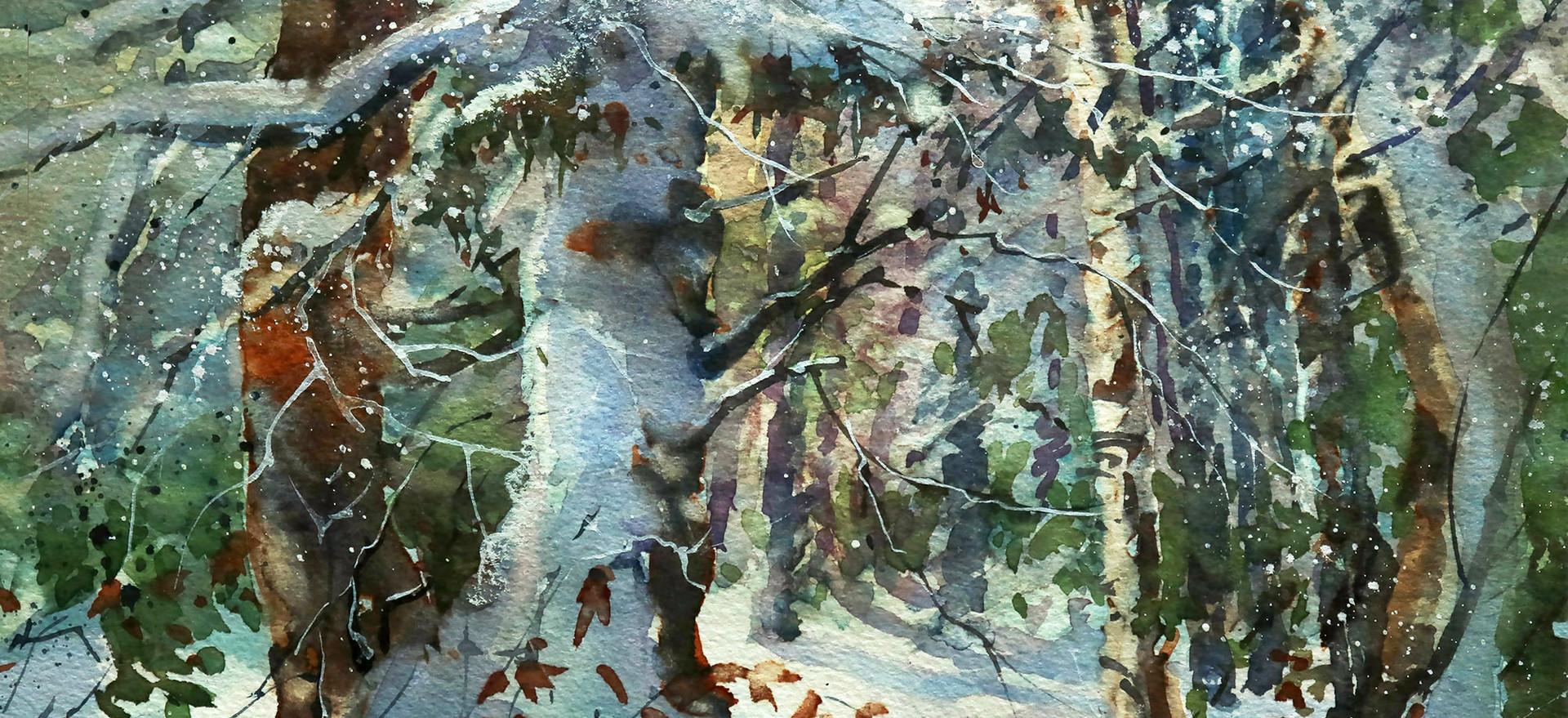 5. Snowy Grove