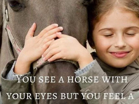 Being Our Best Selves for Our Horses