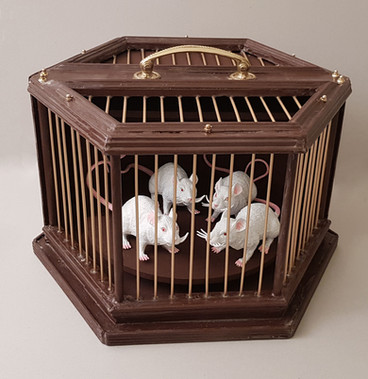 Mouse Cage Prop with revolving base