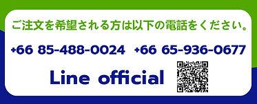 Web Contact_jp.jpg