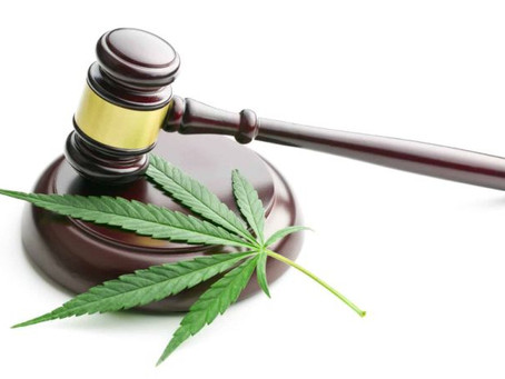 TGA issues guidance for advertising medicinal cannabis