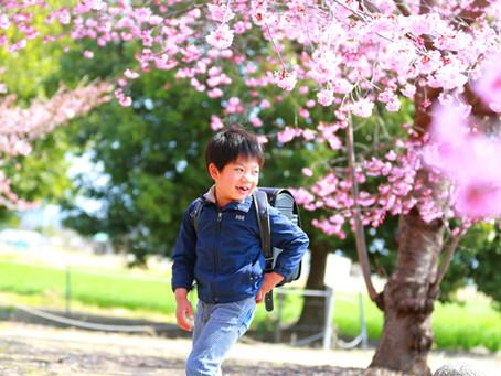 出張女性カメラマン・桜撮影会にて