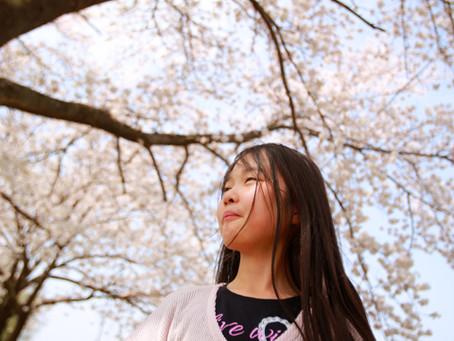 出張女性カメラマン・今日も邑楽町の桜を(^^)