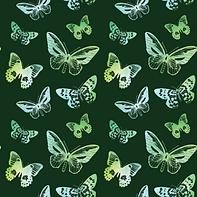 Butterflies #1.2