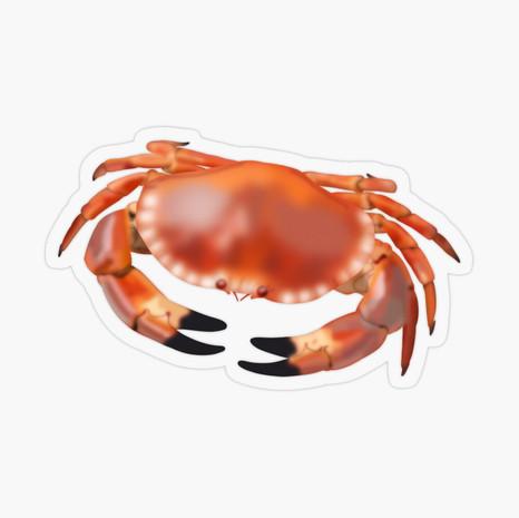 Crab Transparent Sticker