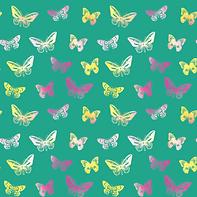 Butterflies #2.4