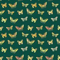 Butterflies #2.2