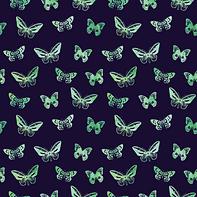 Butterflies #2.5