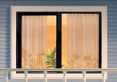 Carbon Window Pic.JPG