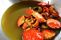 ©_Home_4_Green Crab Stock_DSC_0463