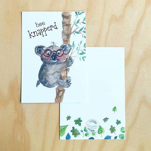 'Hee knapperd koala' Anischtkaart A6
