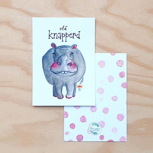 'Hippo olá knapperd' Ansichtkaart A6