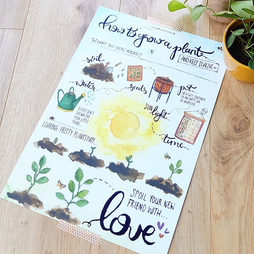 'How to grow a plant?' Poster A3