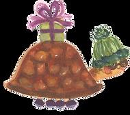cadeautje schildpad.png