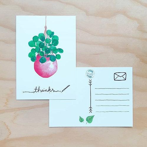 'Pannenkoekenplantje thanks' Ansichtkaart A6
