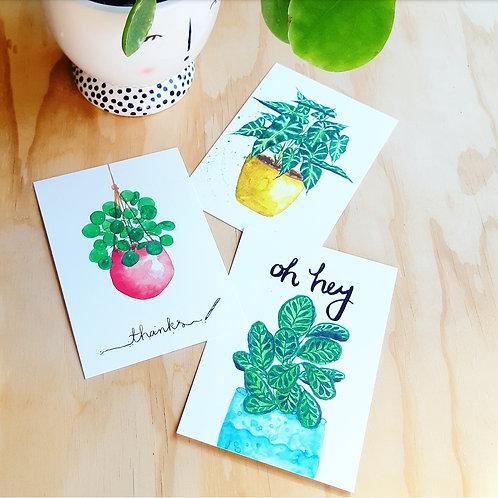 Planten kaartenset! A6