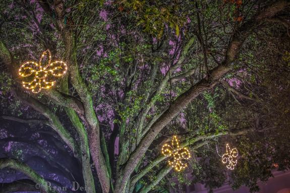 35- Fluer De Trees