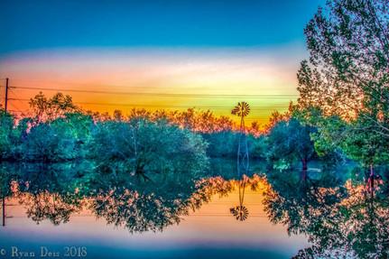 15- Sunset on Vine