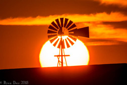 12- Texas Sunrise