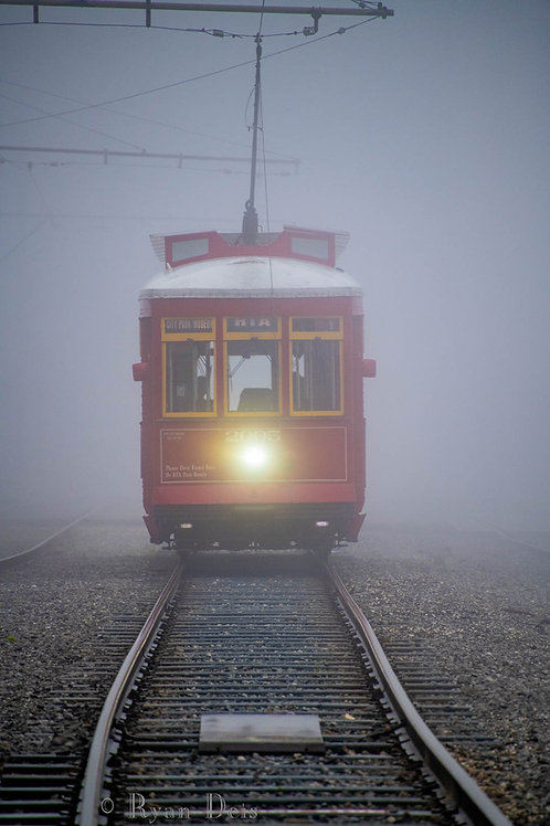 2005 In the Fog