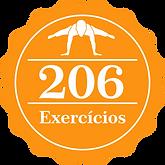 206 exercicios.png
