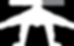 Calistenia Online logo branco.png