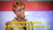 Adichie box.png