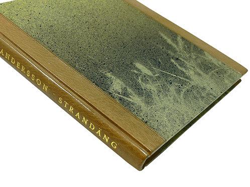 Allan Andersson: Strandäng