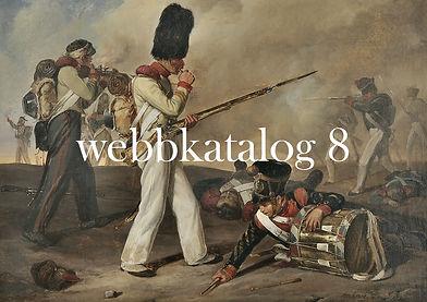Webbkatalog 8