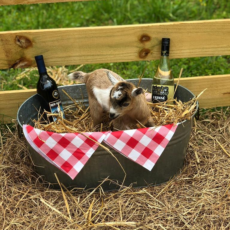 Wine Down Wednesday at Goat Yoga Bham