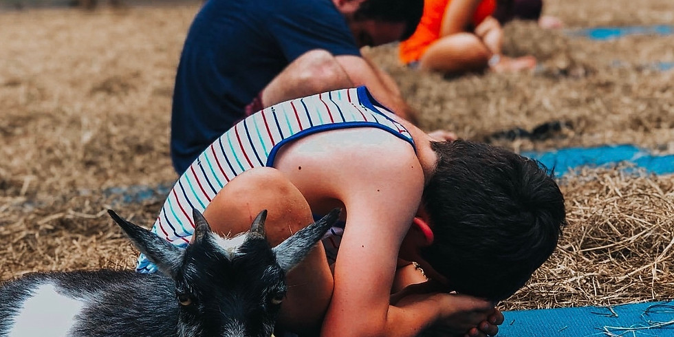 Nov. 14-Beginner Goat Yoga~Gentle Flow