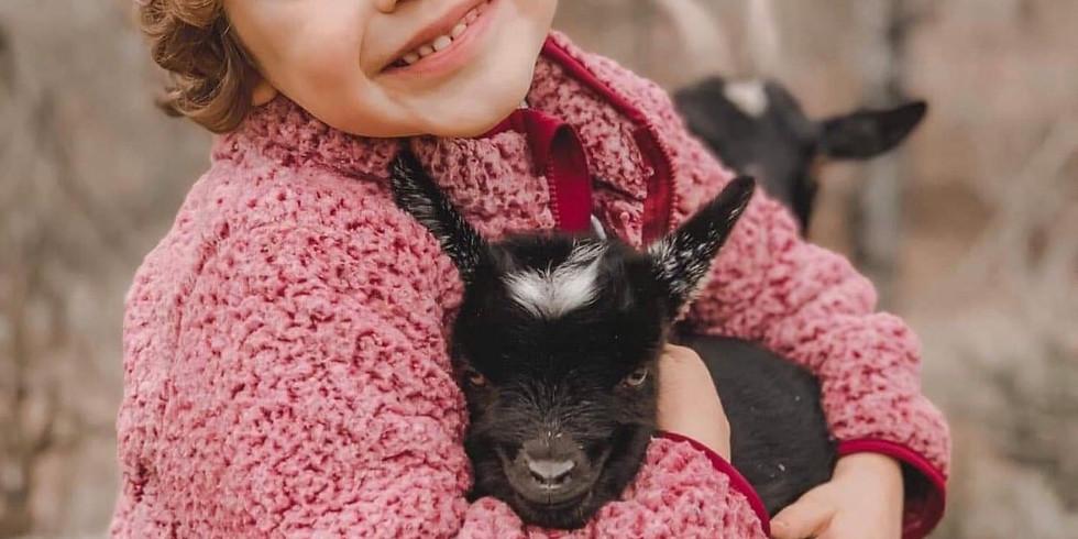 Goat Snuggles + Goat Yoga