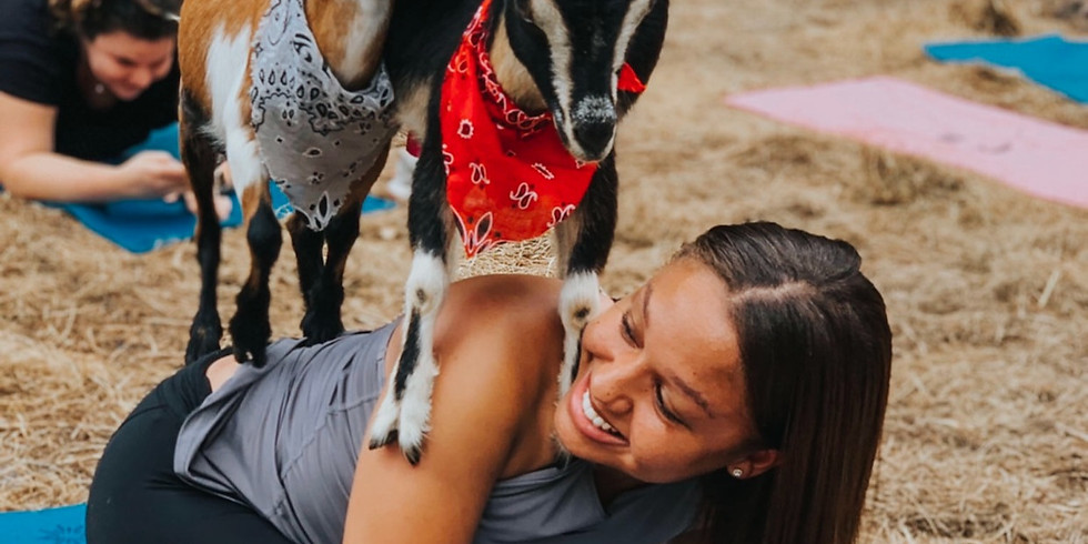 Nov. 7-Beginner Goat Yoga~Gentle Flow