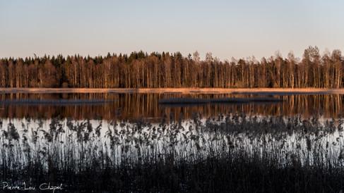 18/04/2019 – Tornasjön, Sweden