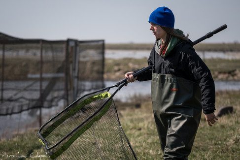 Larrissa puts on her pair of waders, catches her landing net and makes her determined step towards the first entrance of the trap.