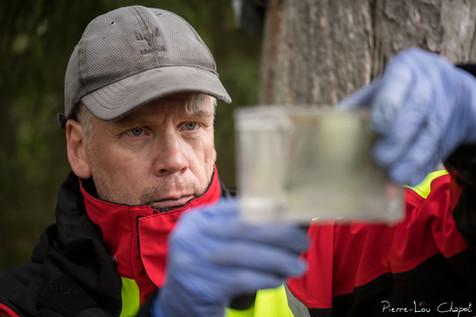 Pentti réalise à nouveau le test de l'eau pour les œufs afin de déterminer précisément la date d'éclosion à venir.