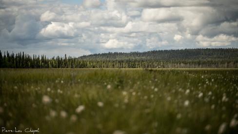 Urho Kekkonen National Park, Finland – 02/07/2019