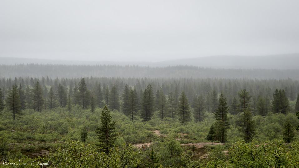 Kiilopää, Finland – 04/07/2019