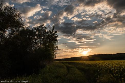 Saint-Martin, Meurthe-et-Moselle