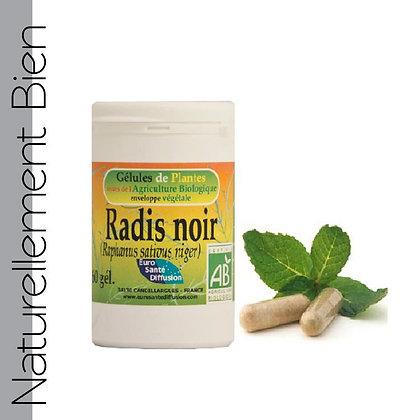 Radis Noir Bio - NN0046