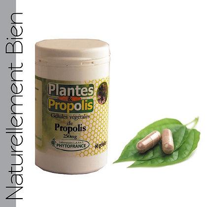 Gélules à la Propolis - NN0040
