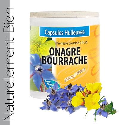 Onagre - Bourrache - NN0125