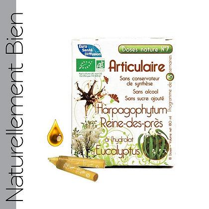 Dose Nature Articulaire Bio - NN0058